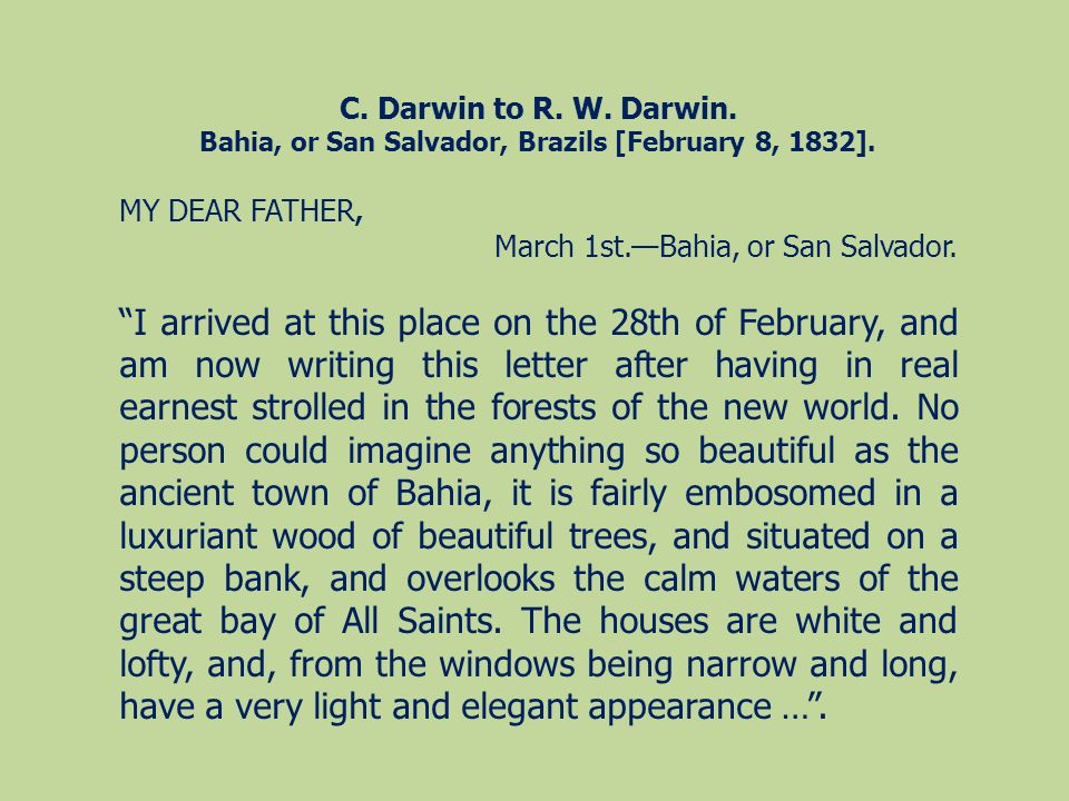 Bahia, or San Salvador, Brazils [February 8, 1832].